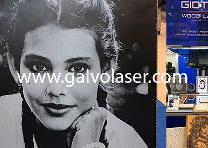 (Turkish) Galvo lazer resim baskı makinası